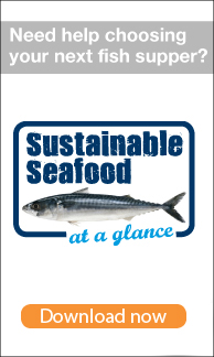 Sustainable Seafood web banner image
